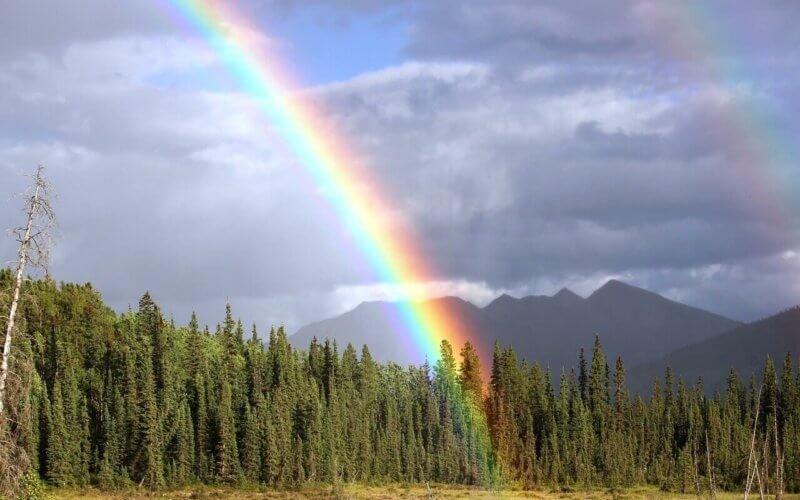 L'arc en ciel représente l'ensemble du spectre lumineux