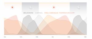 horloge biologique sommeil